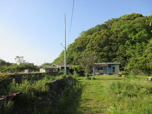 渡鹿野島の奥地