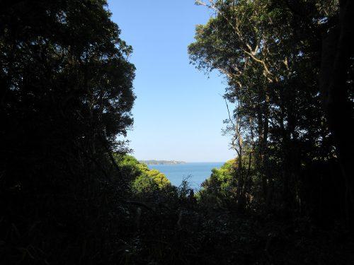 ジブリ的渡鹿野島