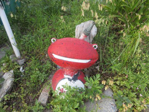 ギャラリーカモメ赤いカエル