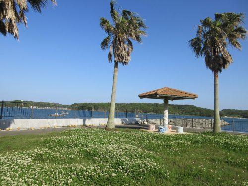 渡鹿野島海岸沿い